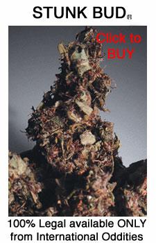 Legal Bud